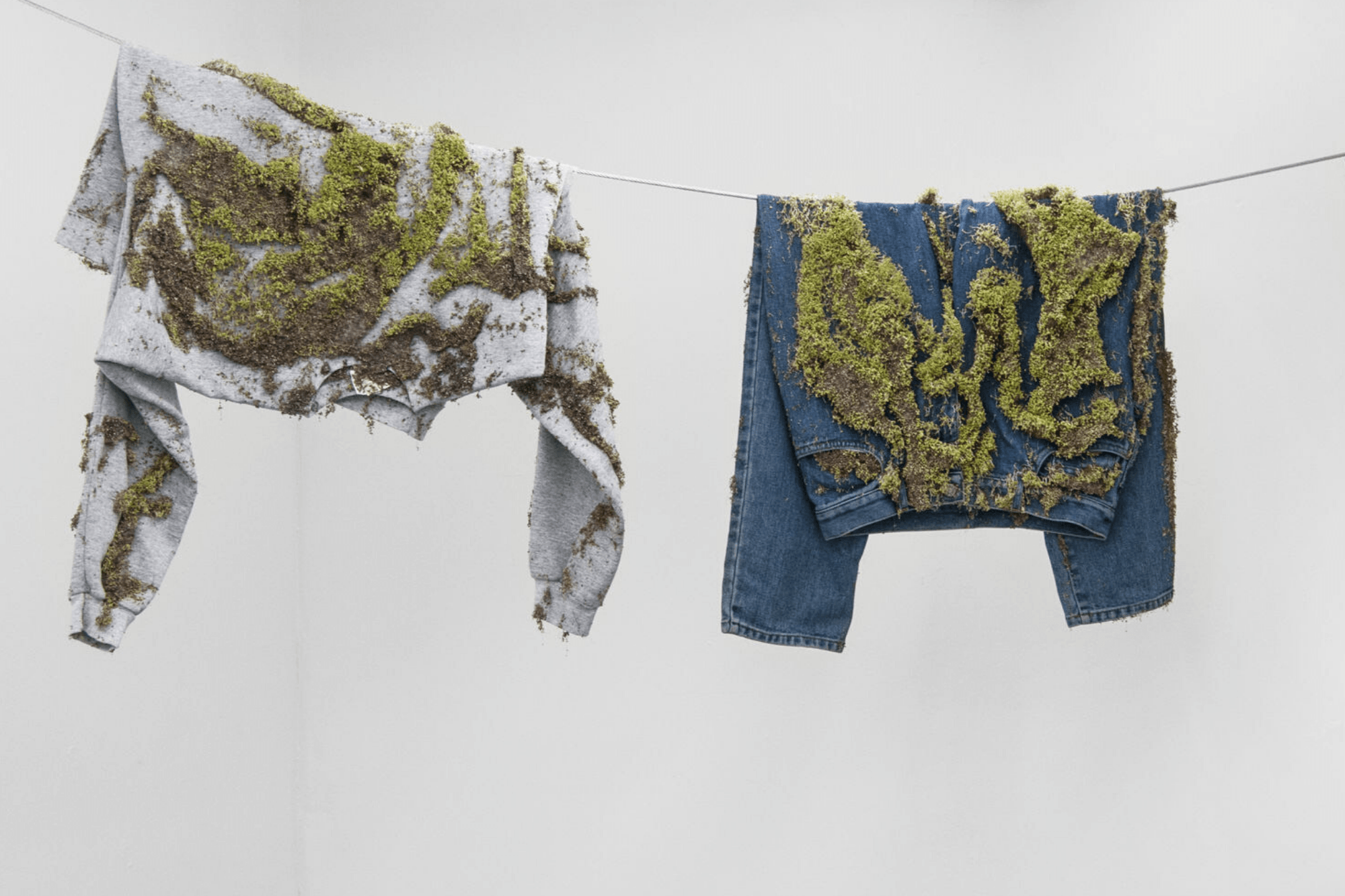 Are biodegradable clothes sustainable over time ?