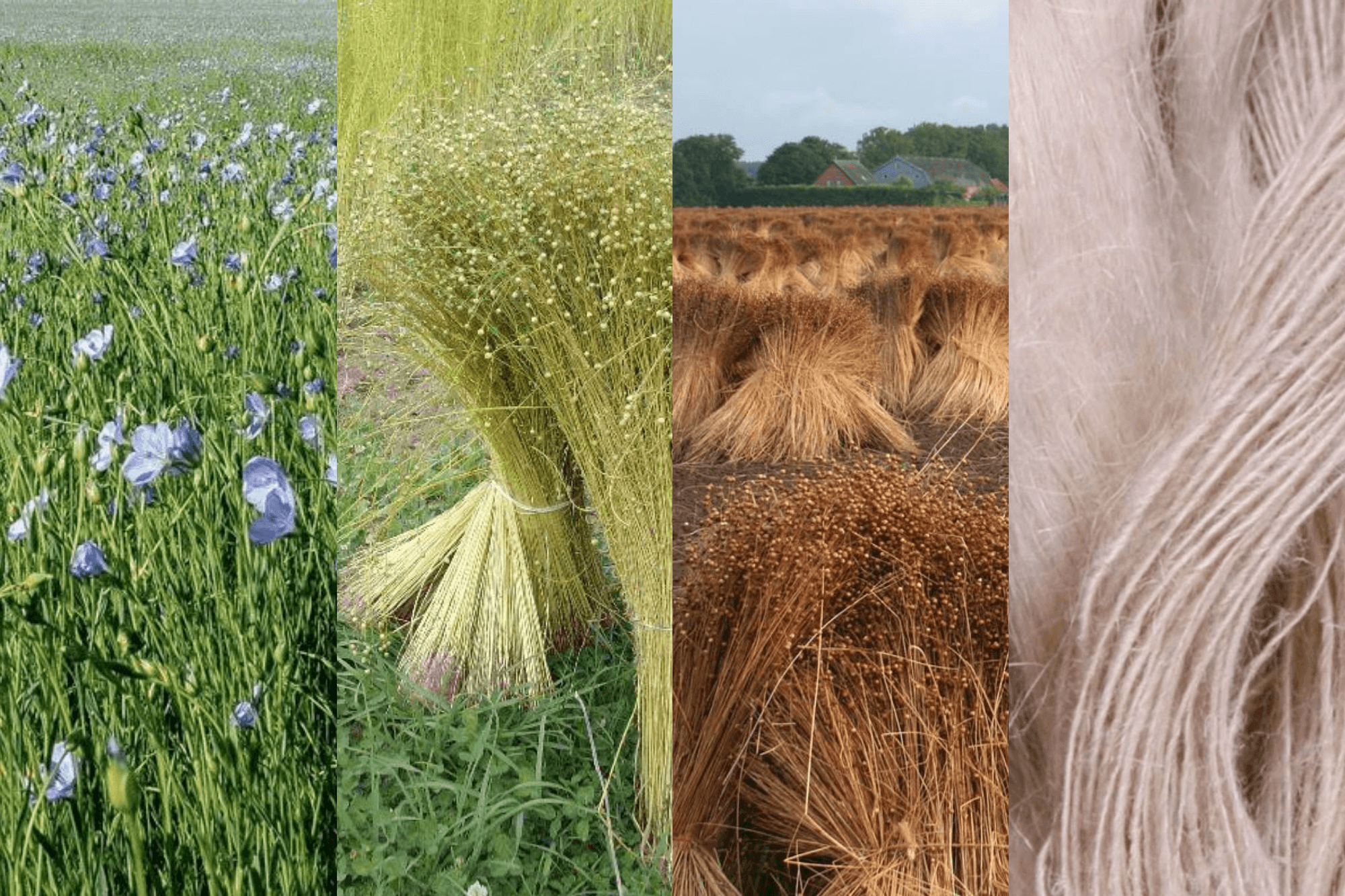All you need to know about Linen and organic Linen