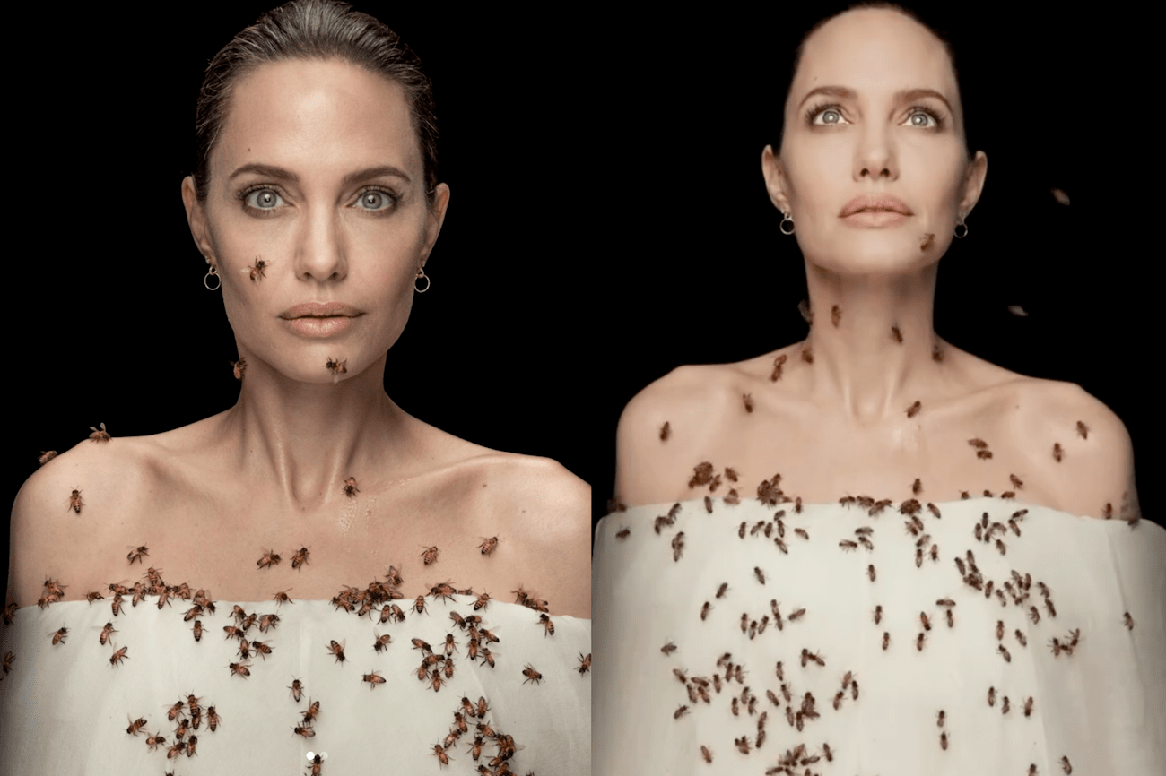 Angelina in collaboration with@natgeo
