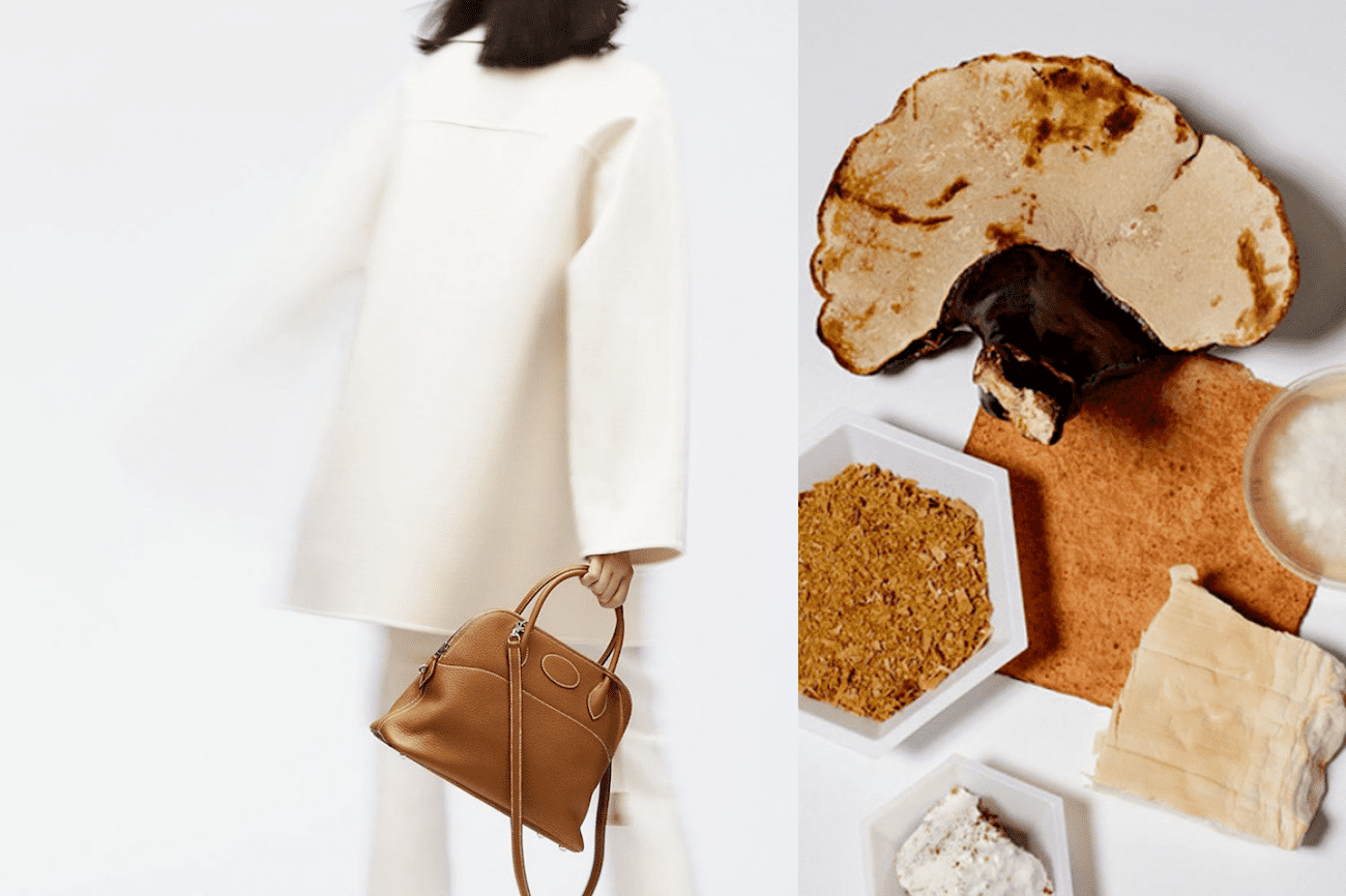 Mushroom Leather: all you need to know about the next big vegan leather alternative